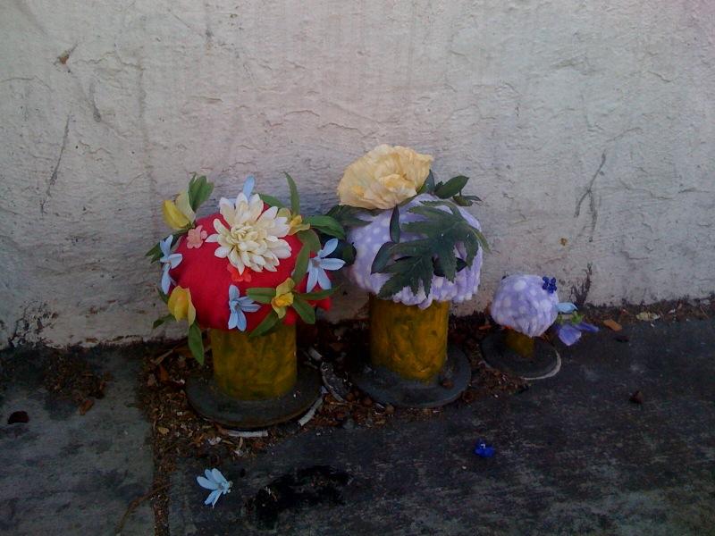 valencia-st-mushroom