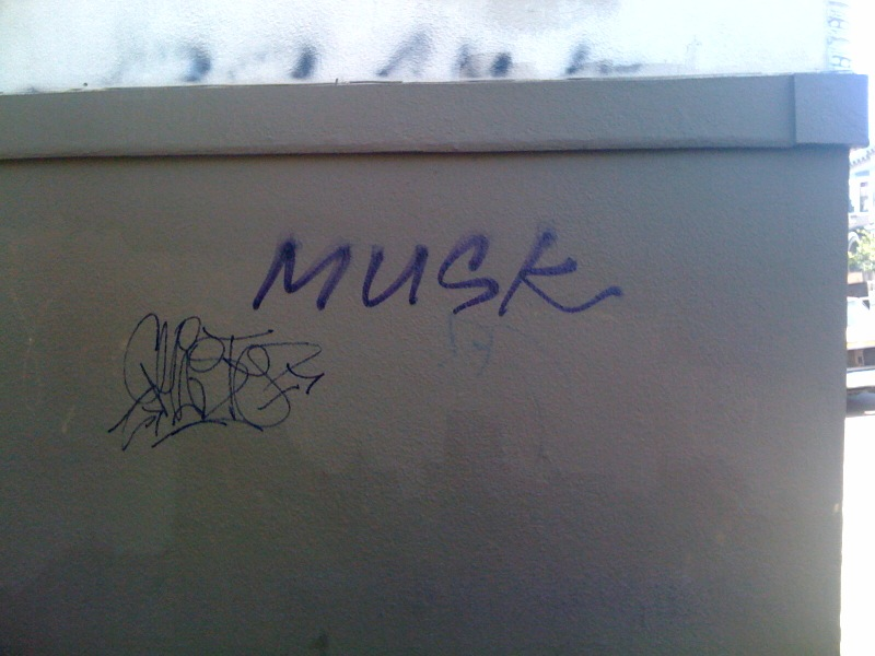 fuck_musk